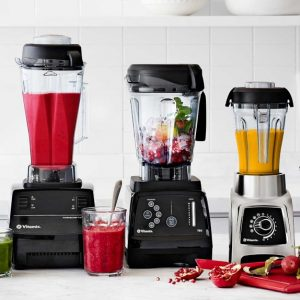Vitamix Reviews Which Vitamix to Buy Questions
