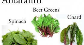 Amaranth: Why @BlenderBabes Wants You to Rotate Your Greens