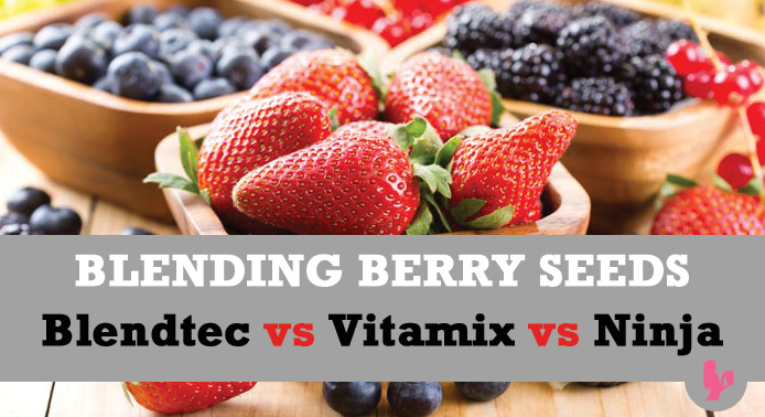 Blending Raspberry, Blackberry & Other Berry Seeds ~ Blendtec vs Vitamix vs Ninja by @BlenderBabes