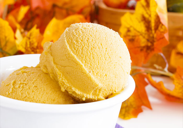 Homemade Skinny Pumpkin Pie Ice Cream Recipe made in a blender by ...