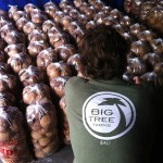 Big Tree Farms Natural & Organic Product Copmany Favorites at Natural Product Expo by @BlenderBabes