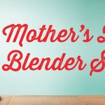 Blender Deals and Sales Vitamix Blendtec no coupon