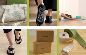 BlenderBabes Holiday Christmas Healthy Gift Guide 2015 Gaiam Gifts