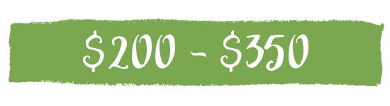 Best blenders $200-$350