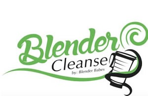 Blender Babes Holiday Christmas Healthy Gift Guide 2015 The Blender Cleanse