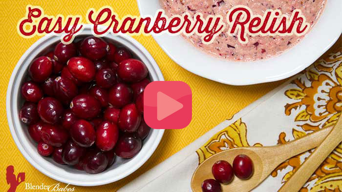 Easy Recipe for Cranberry Relish by Blender Babes
