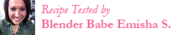 Blender Babes Vitamix vs Blendtec recipe tester