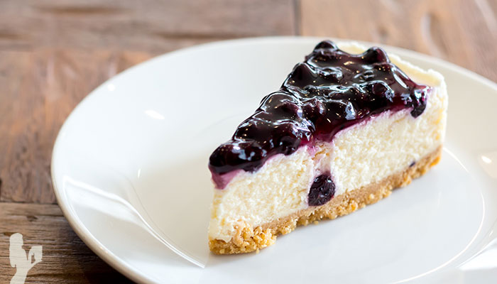 Paleo Frozen Blueberry Dairy-Free Cheesecake