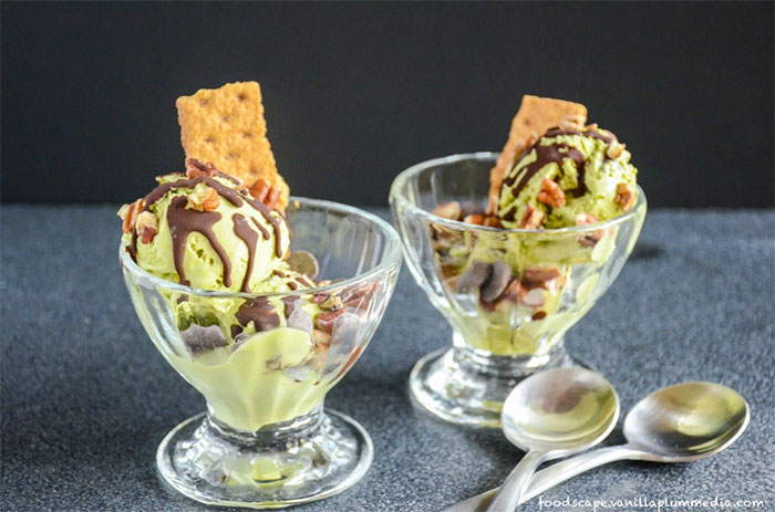 Blendtec and Vitamix Ice Cream Recipes | Mint Chocolate Chip Ice Crea