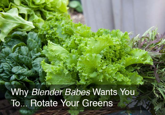 How and Why to Rotate Your Greens for Smoothies