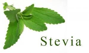 Stevia sugar substitute sweetener