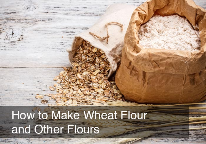 How to Make Wheat Flour and Other Flours by @BlenderBabes