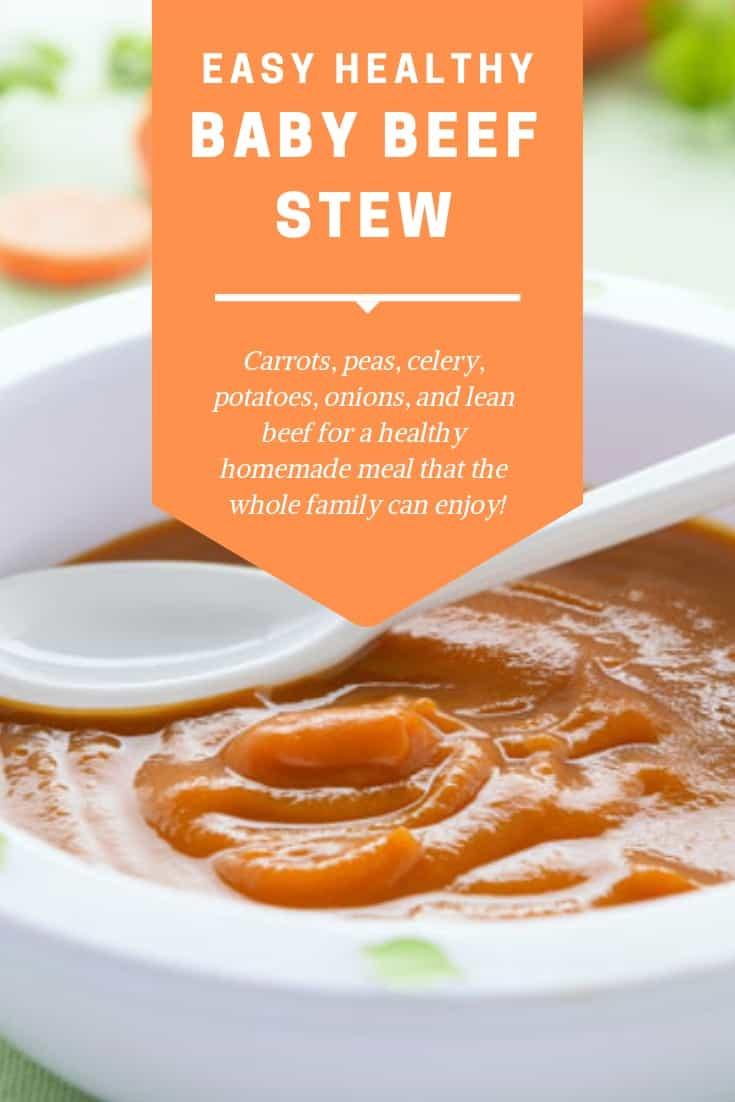 Baby Beef Stew Blender Babes