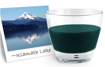 spirulina or e3live fresh frozen algae klamath lake