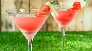 Watermelon Martini made in your Blendtec or Vitamix by @BlenderBabes